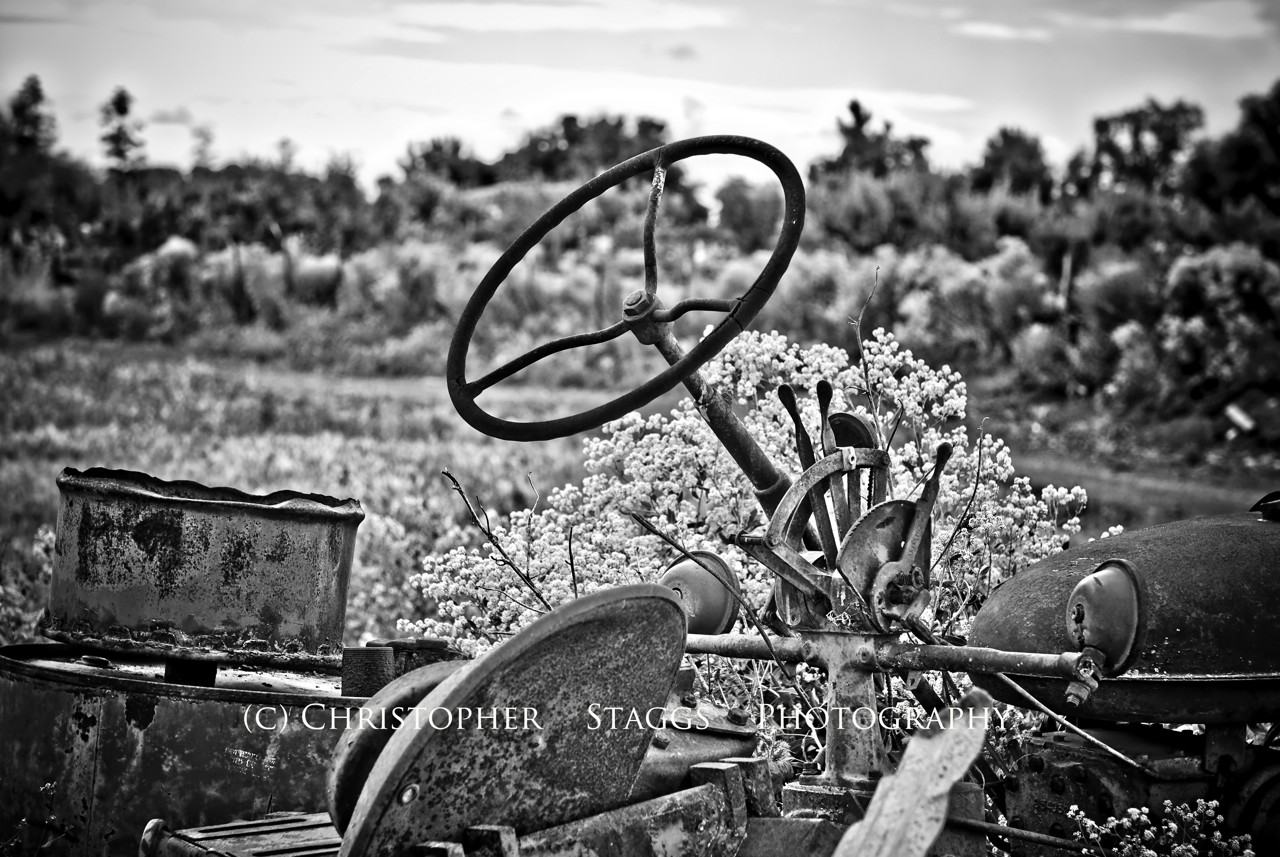 the wheel author staggs christopher