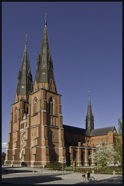 uppsala cathedral author downs jim