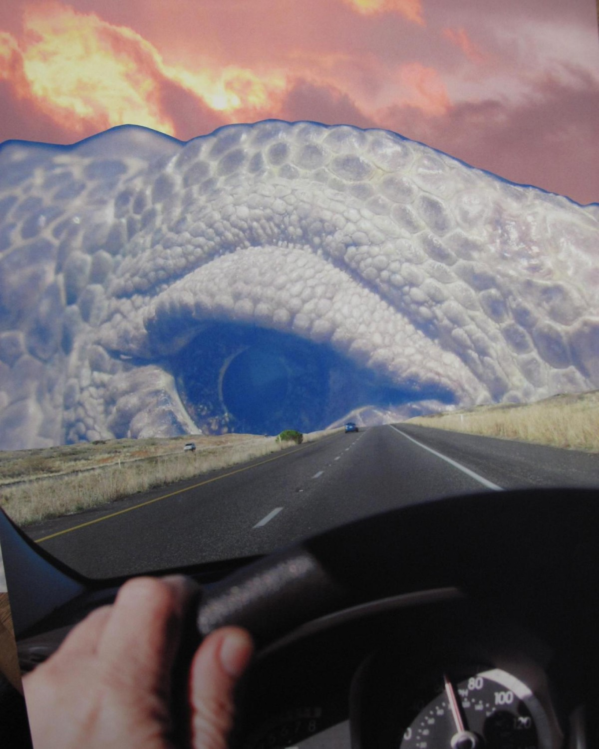 driving into the lizard s eye photo collage by bob dreizler