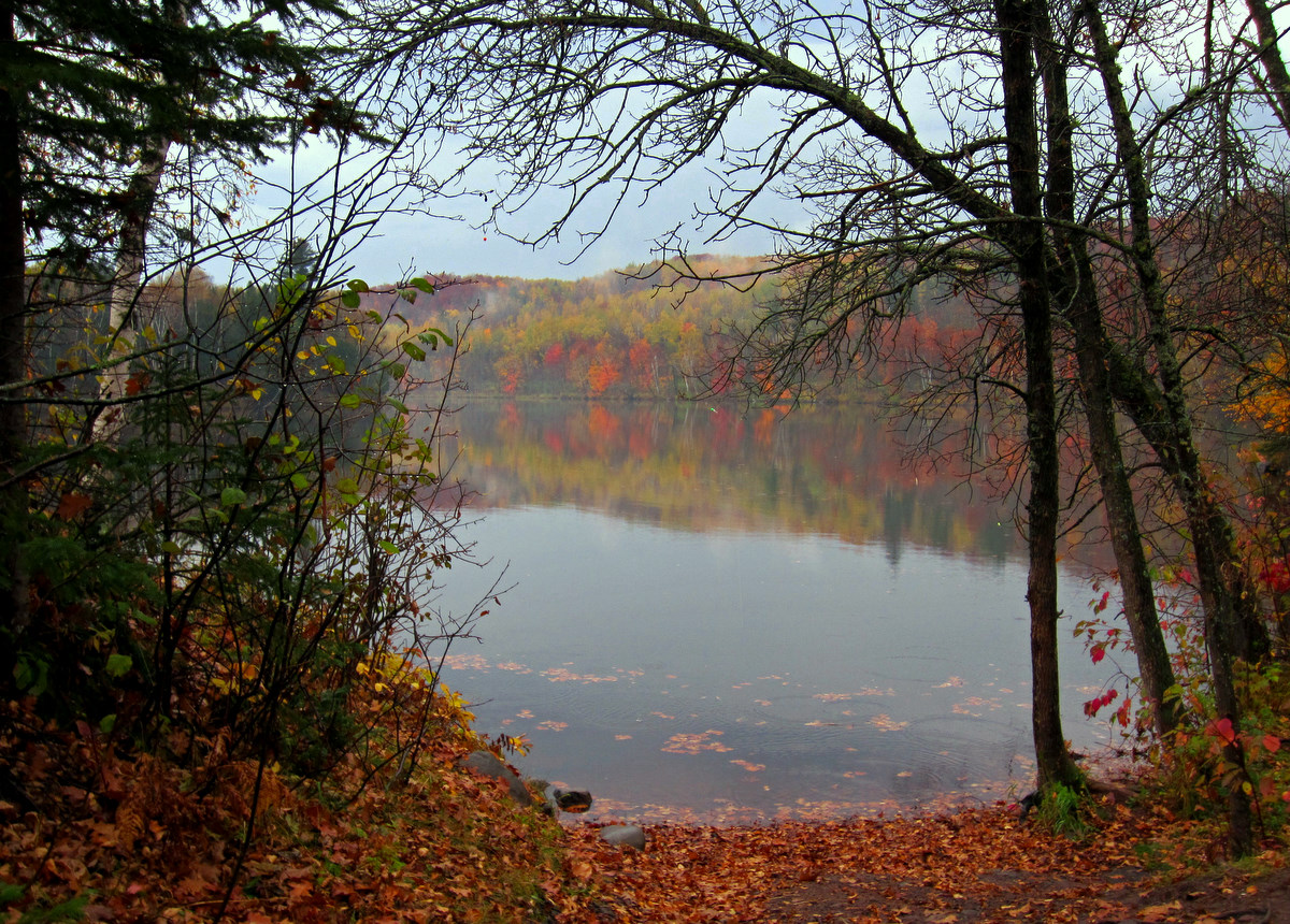 fall view of the portage author pluskwik paul