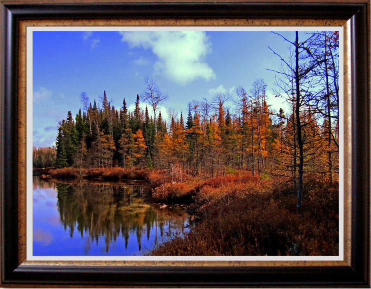 morning shoreline reflections in the fall author pluskwik paul