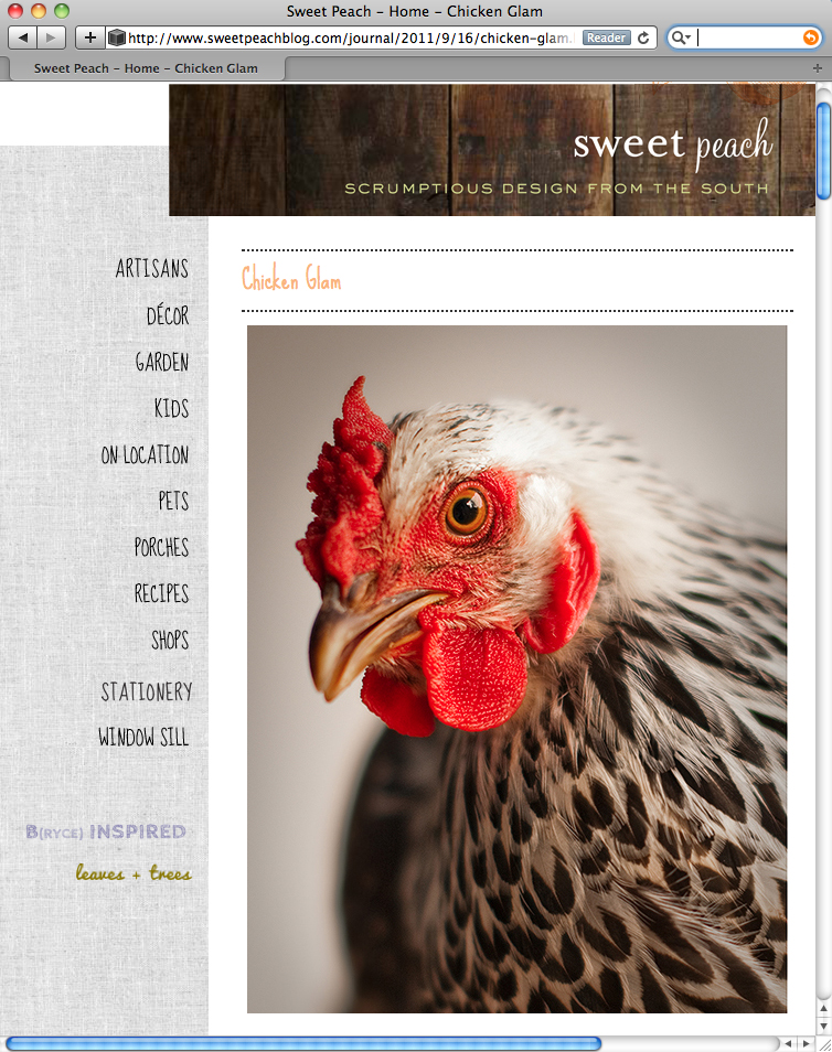 chicken glam on sweetpeachblog com author walker clay