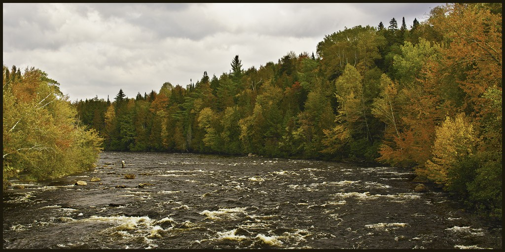 androscoggin river in autumn large view author d downs jim