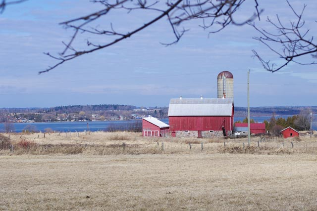 red barn port perry author brooks david