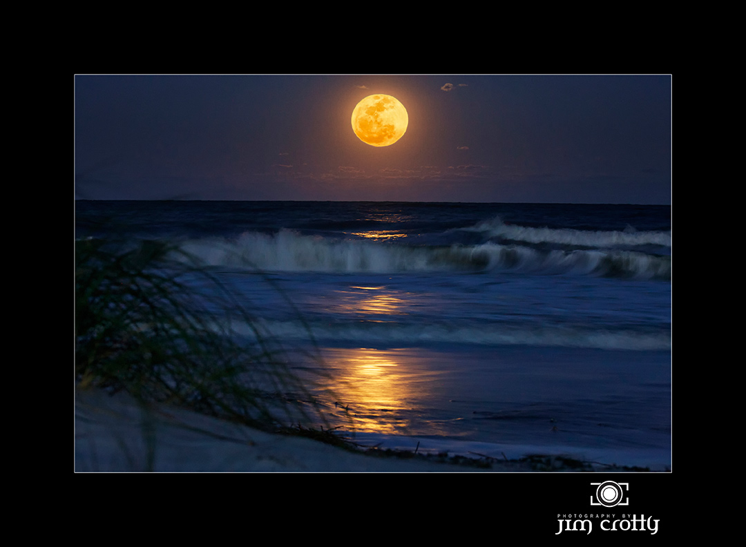 easter moon by jim crotty author