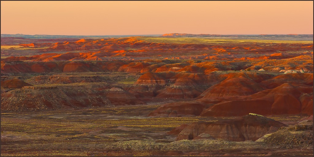 the painted desert in petrified forest np author downs jim