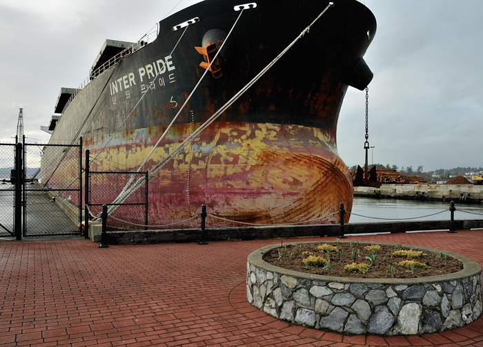 bulk carrier in for cleaning logs on the backgroun melia wayne