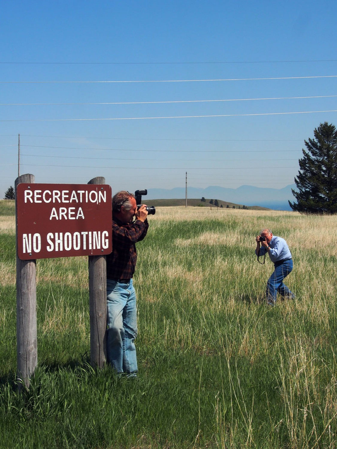 shooting a shooter author hull ray