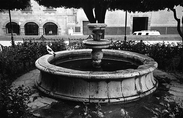 san miguel fountain author ray