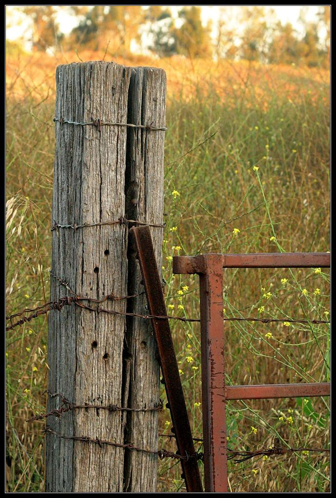 post with barbed wire at sunset author northcutt todd