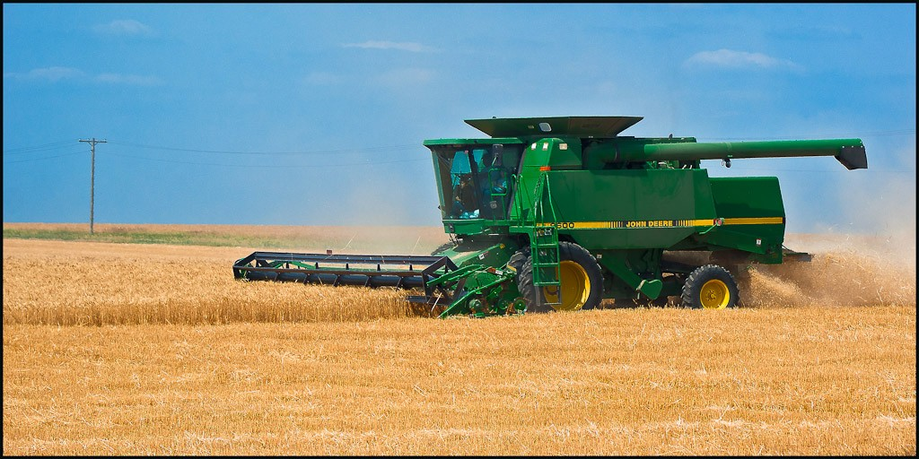 kansas wheat harvest larger available author dow downs jim