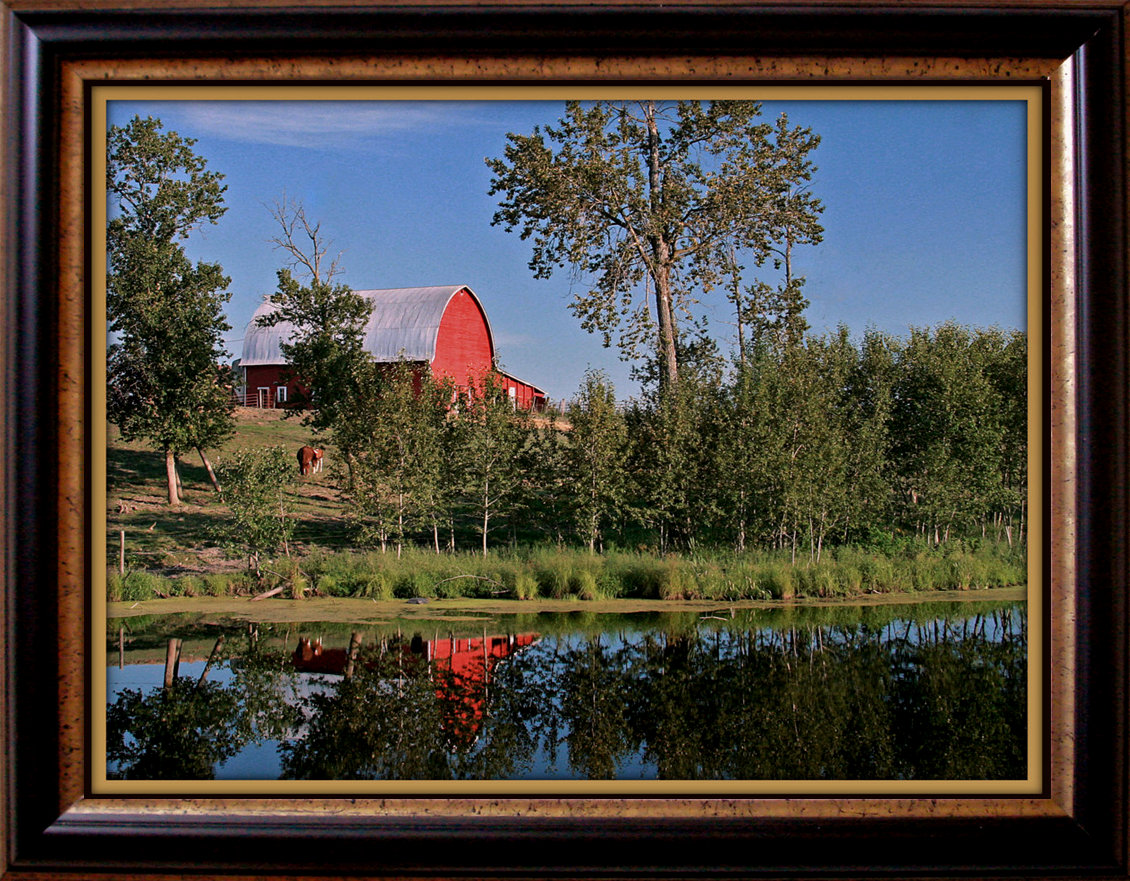 old red barn reflection author pluskwik paul
