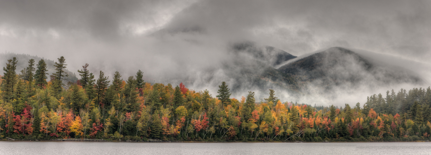 little whiteface emerges from the cloud cover aut scherer kevin
