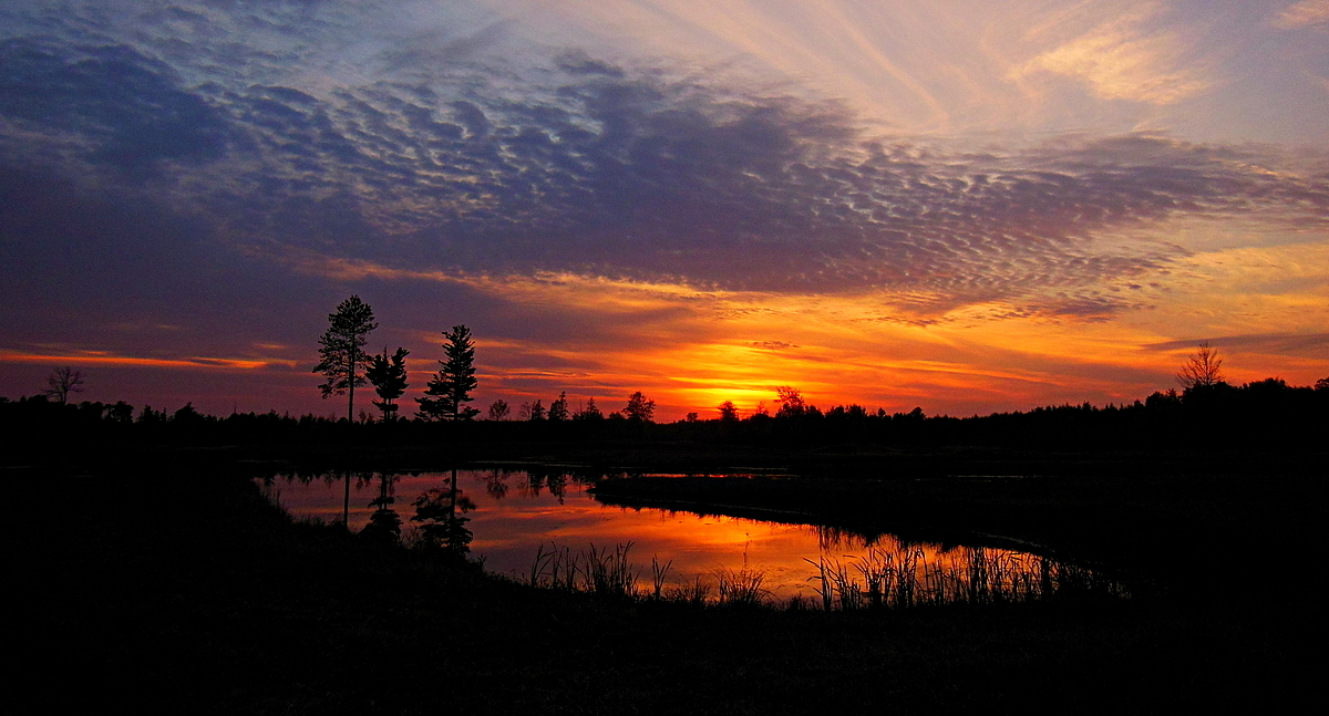 sunset at the pond author pluskwik paul
