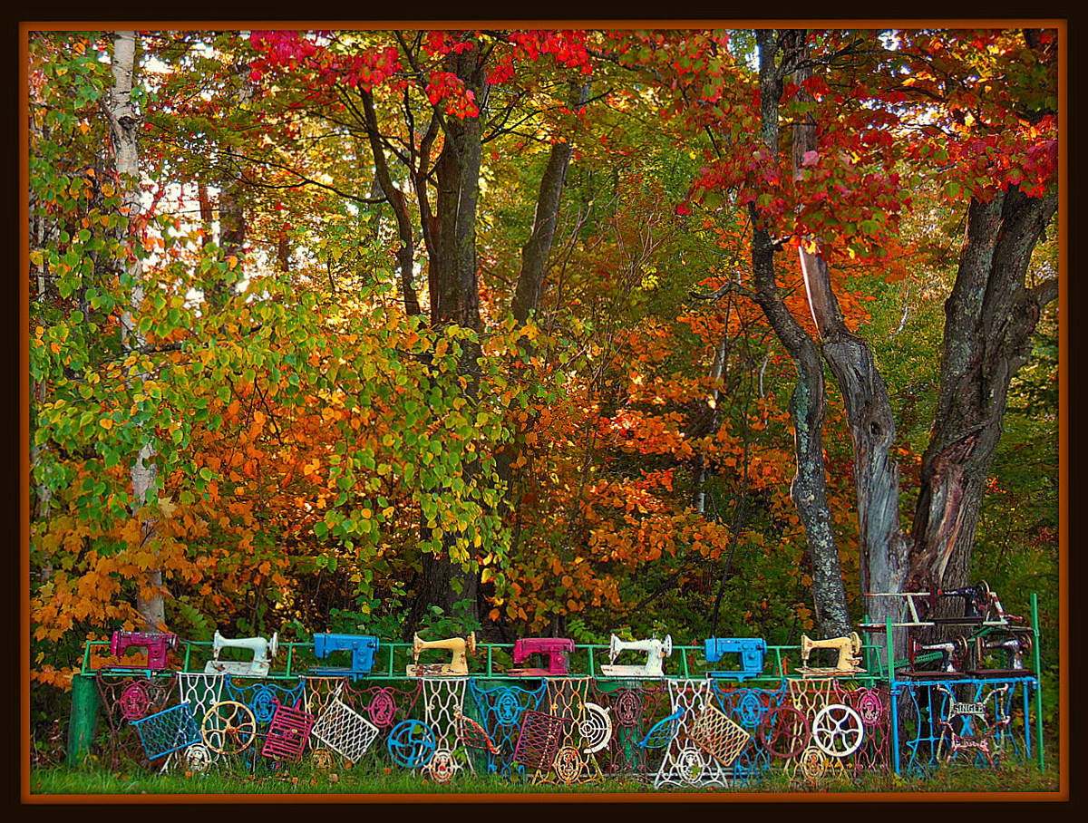 sewing machine fence and fall colors author plusk pluskwik paul