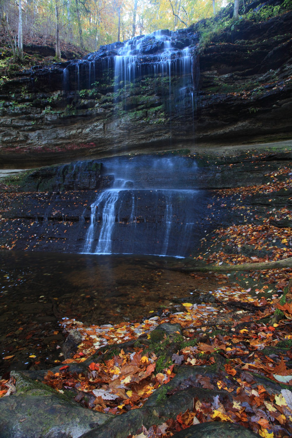 stillhouse hollow falls tennessee author szulecki joshua