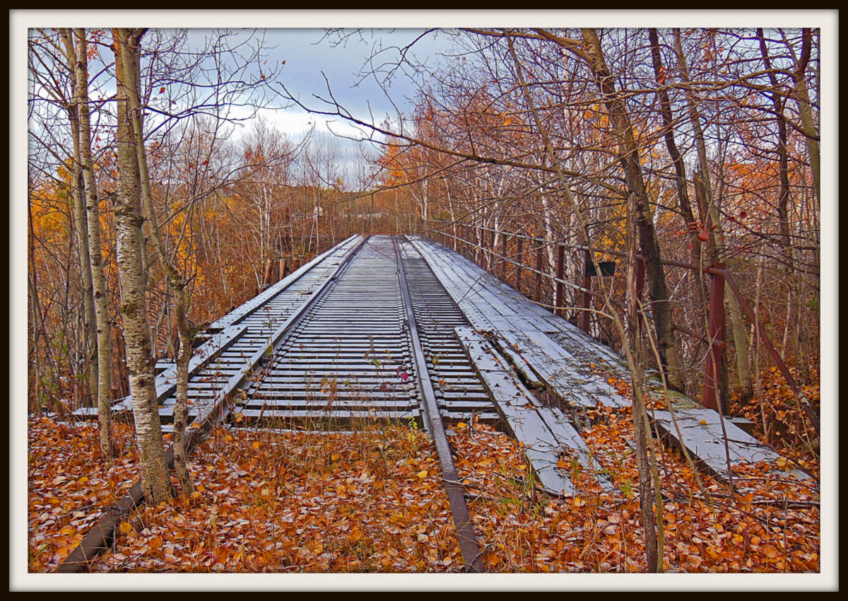 frost on the old tracks author pluskwik paul