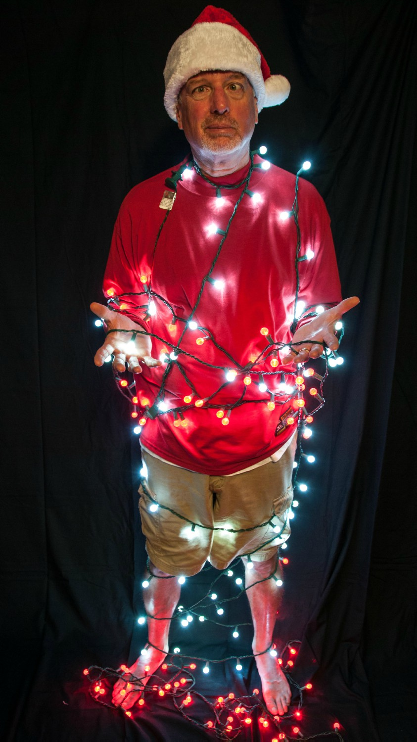christmas light mess author watson richard