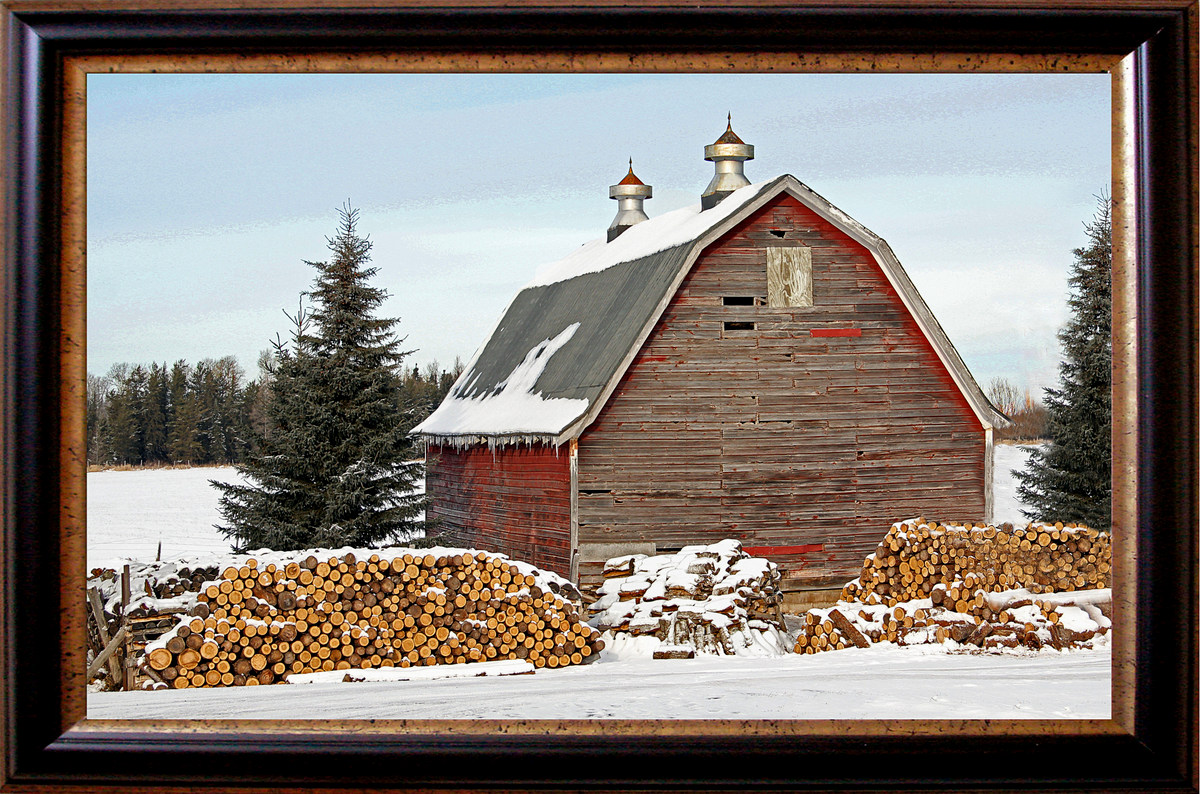 red barn and fire wood author pluskwik paul