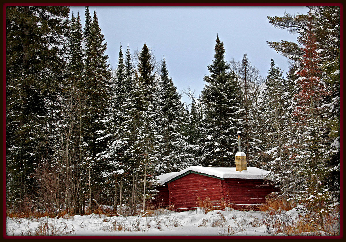 little red cabin in the tall pines author pluskwi pluskwik paul
