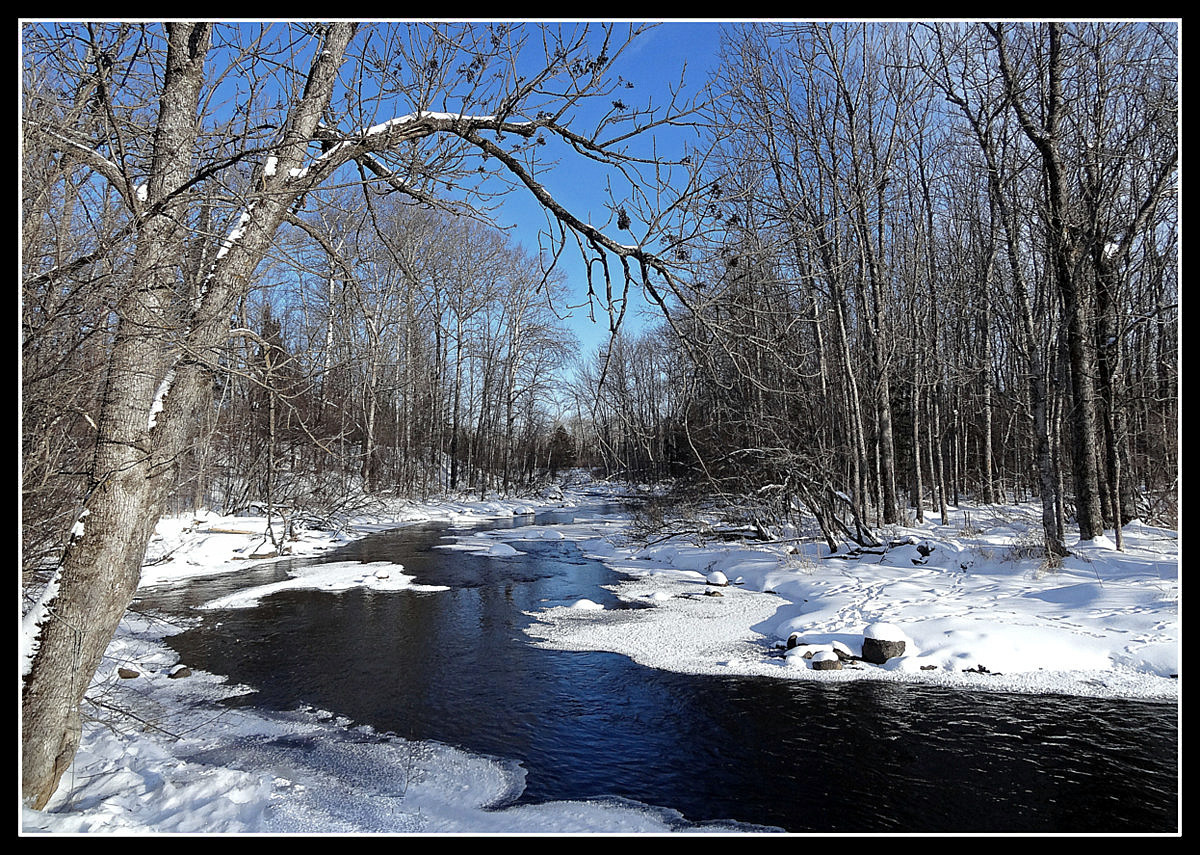 winter landscape beauty author pluskwik paul