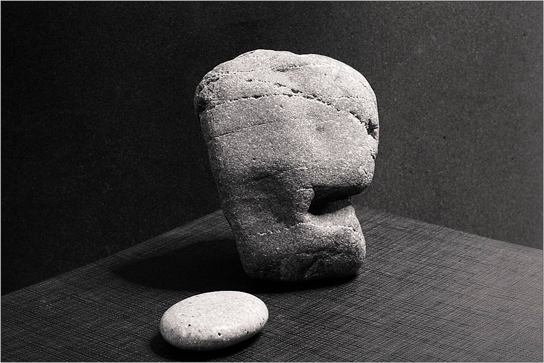 two stones or a thought author celasun bulent