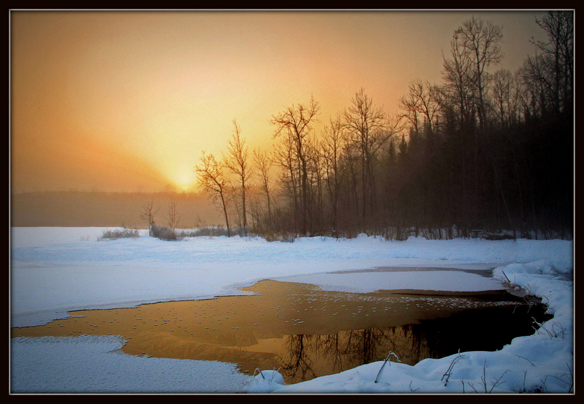 winter sunrise reflects in the beaver pond author pluskwik paul