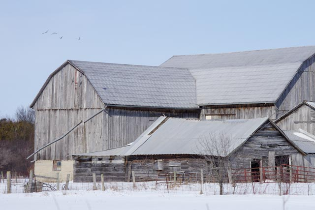 barn on th in winter author brooks david