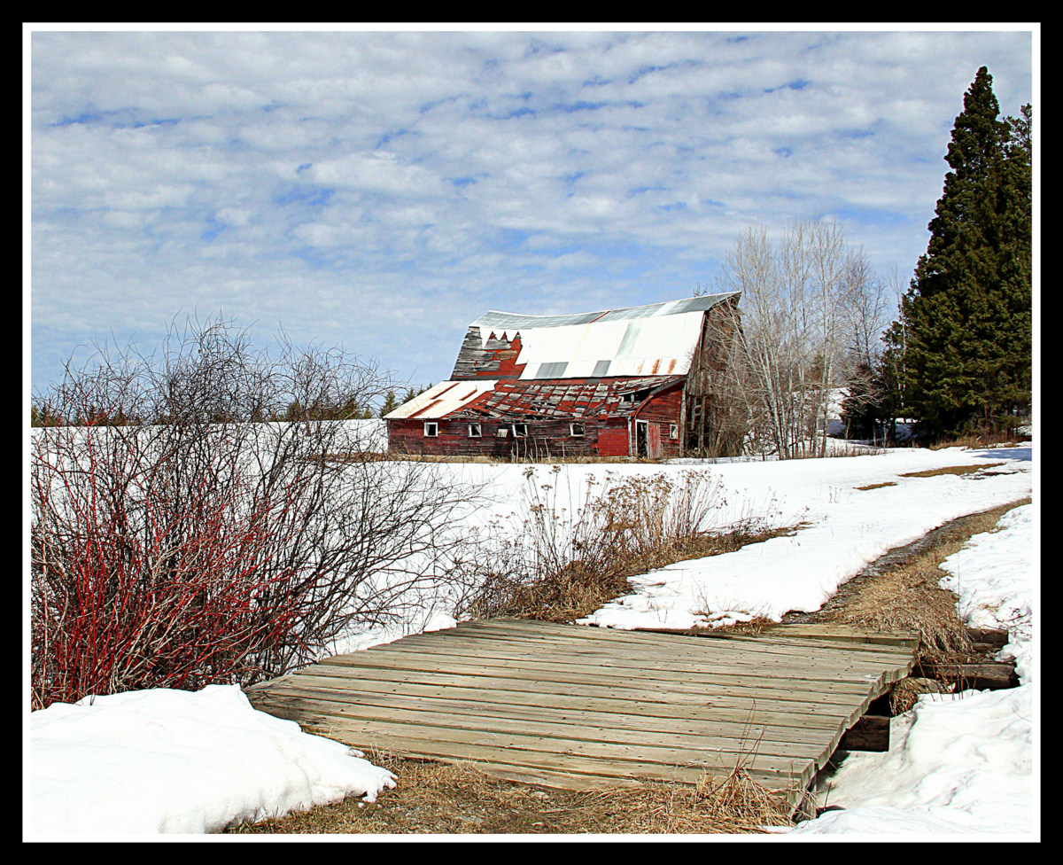 road to the old barn author pluskwik paul
