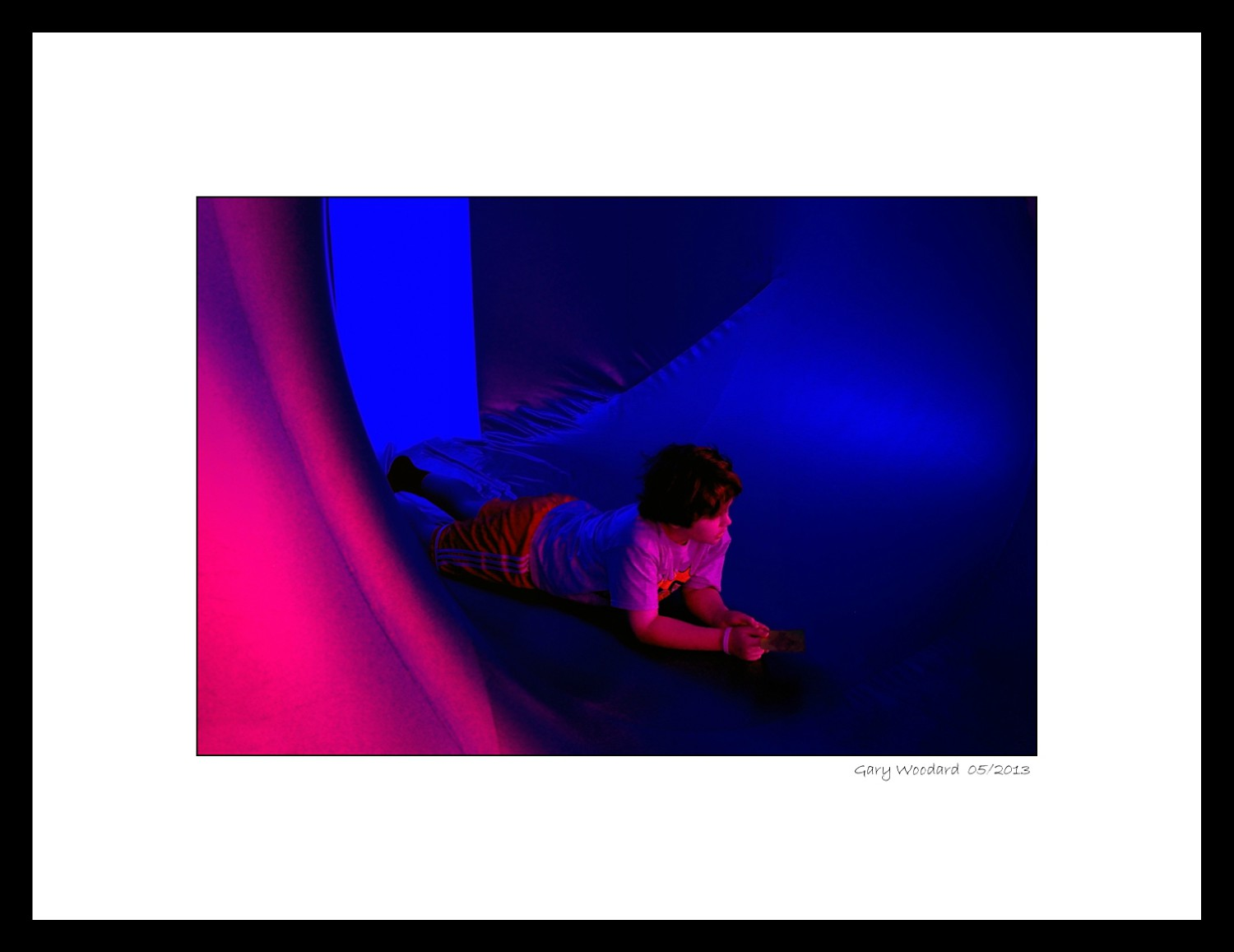 luminarium interior author woodard gary