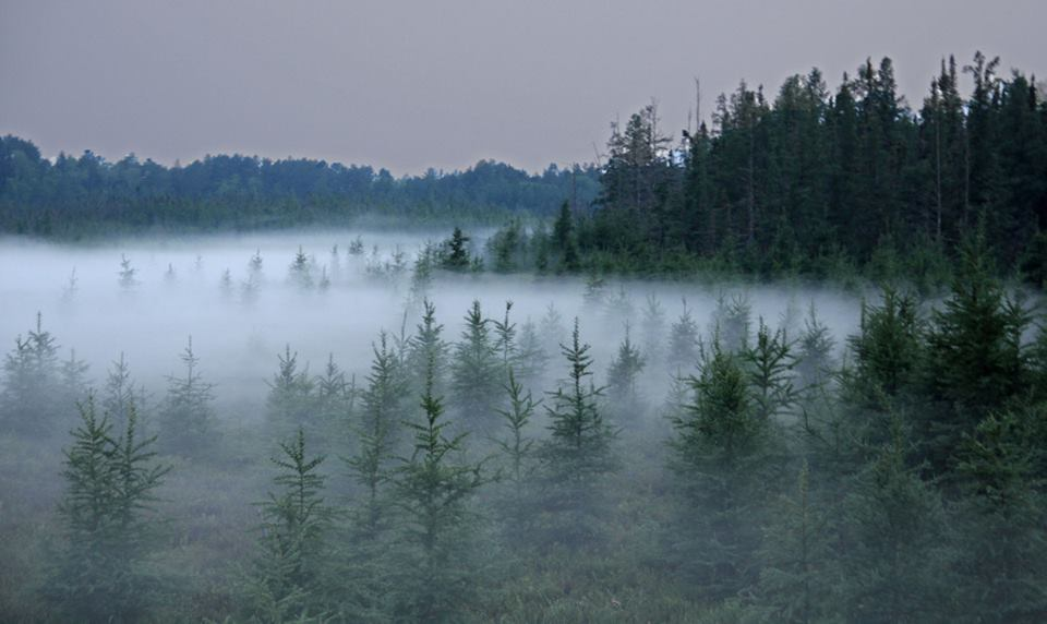 fog in the river valley at sunset author pluskwik paul