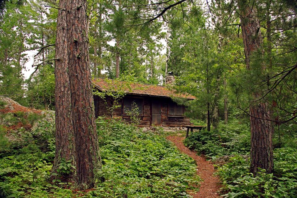 old log cabin in the woods author pluskwik paul