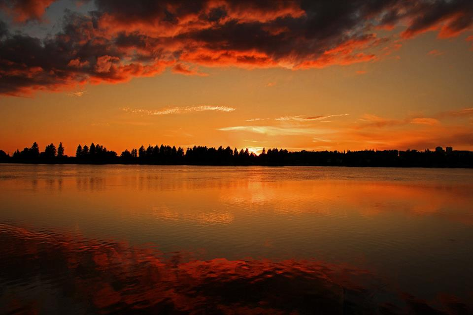 sunset on the clouds author pluskwik paul