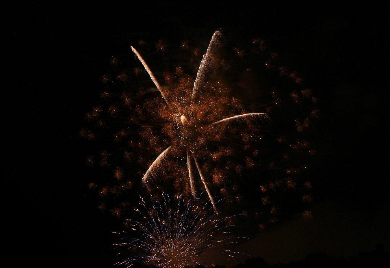 fireworks img w author sava gregory and verena