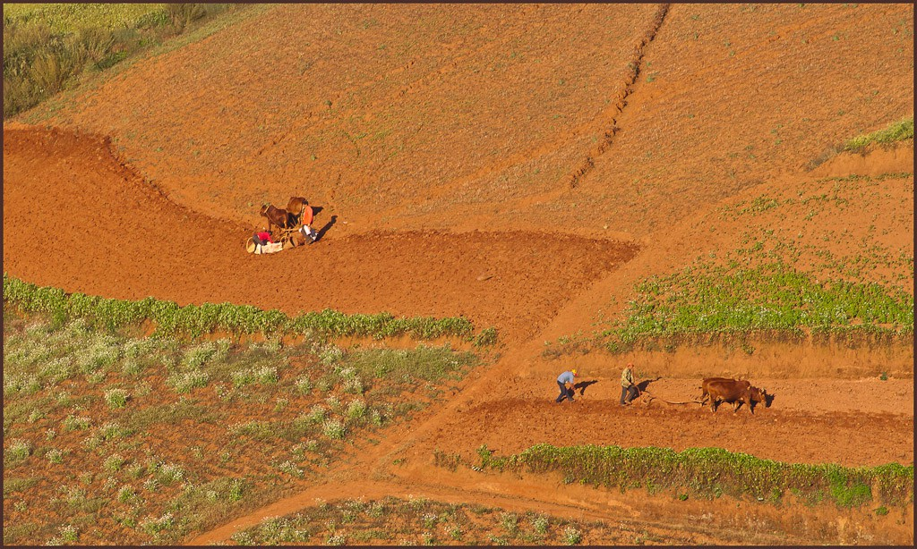 dongchuan redlands mechanized farming pls view lar downs jim
