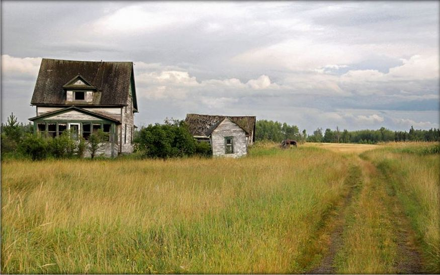 road into the old homestead author pluskwik paul