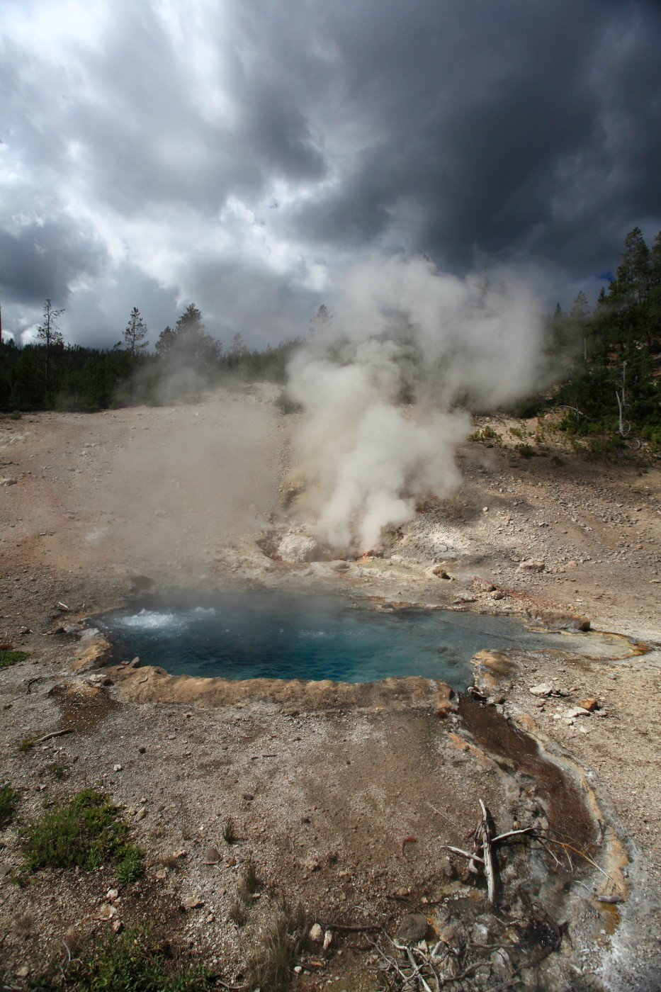 beryl spring yellowstone national park author s szulecki joshua