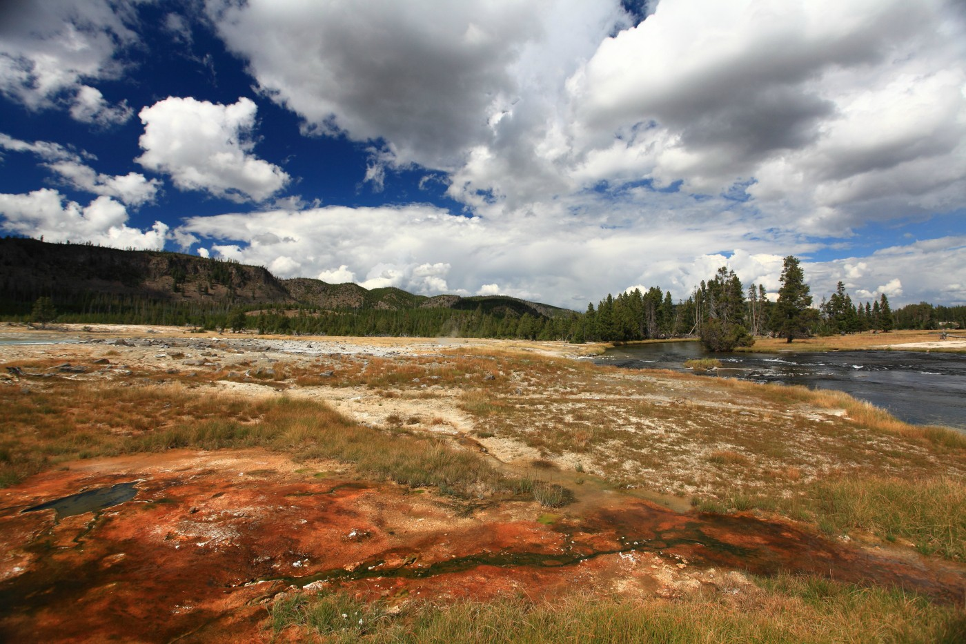 yellowstone national park author szulecki joshua