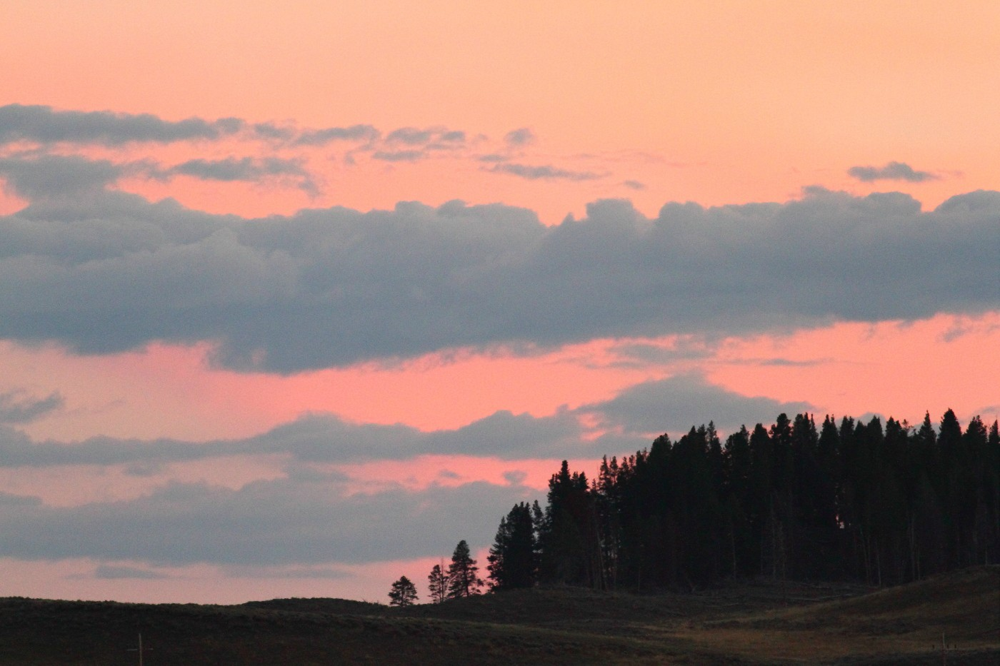 sunset hayden valley yellowstone national park szulecki joshua