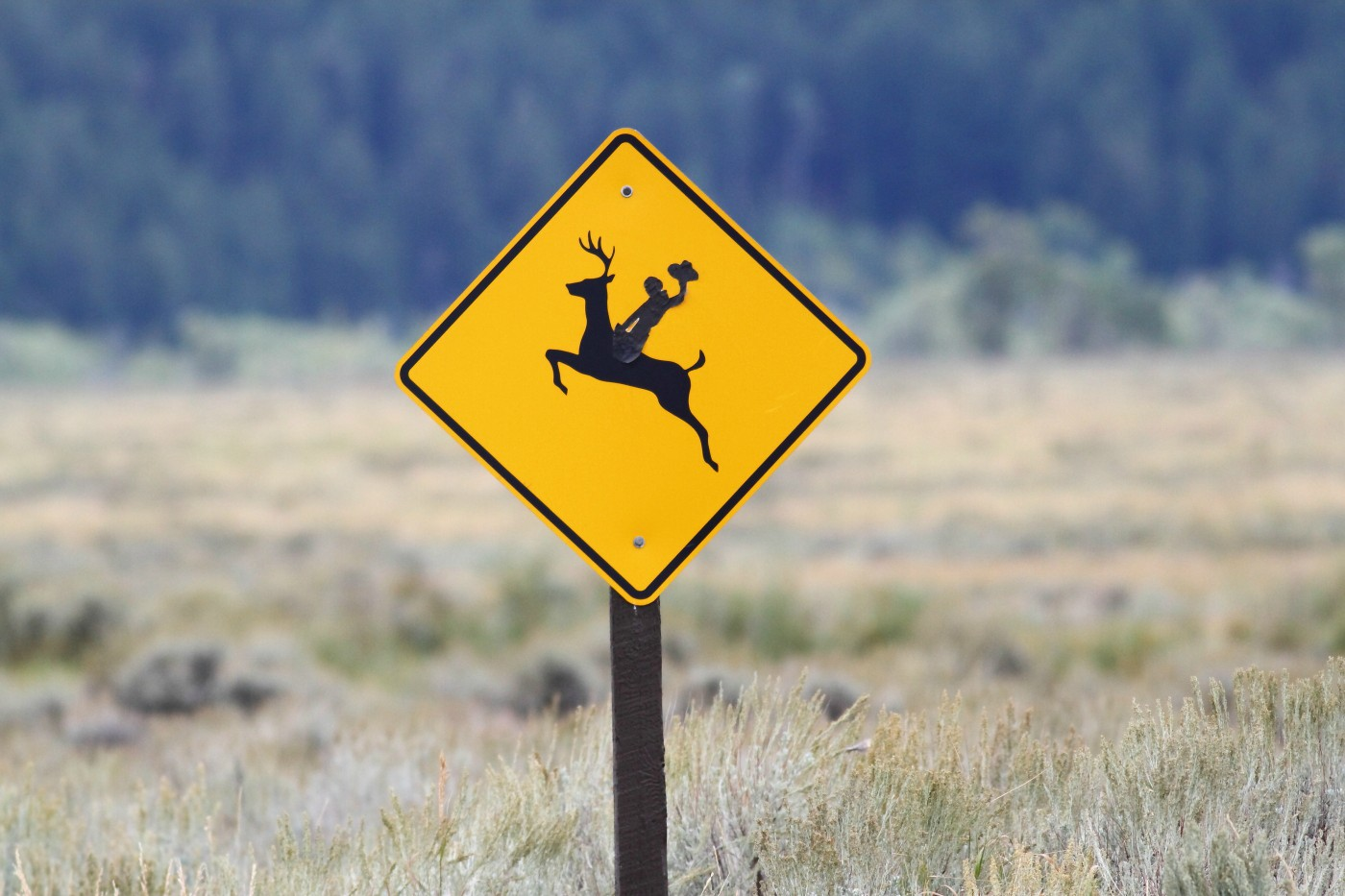 many deer crossing signs in the jackson wy area ha szulecki joshua