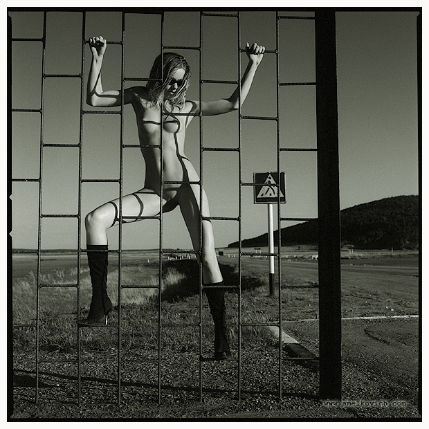 bus stop nude author amelkovich igor
