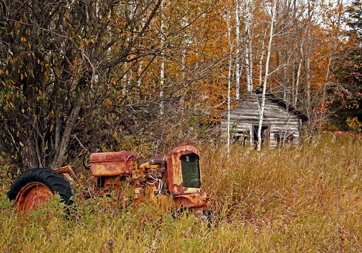 fall at the old farm author pluskwik paul