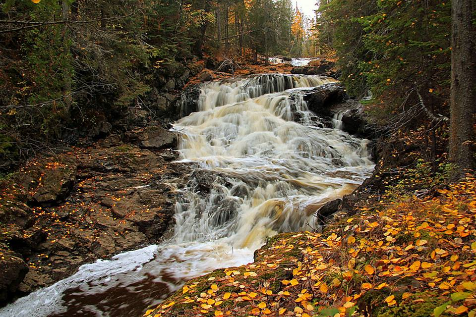 fall along the french river author pluskwik paul