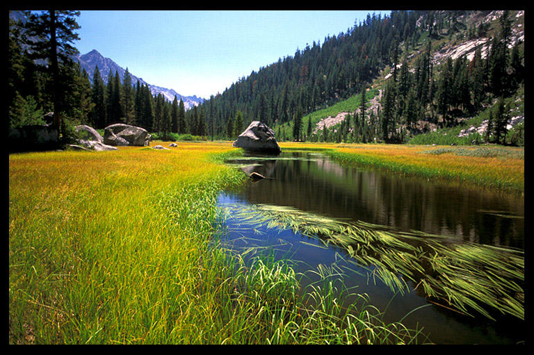 grouse meadow kings canyon national park author e ernst brian
