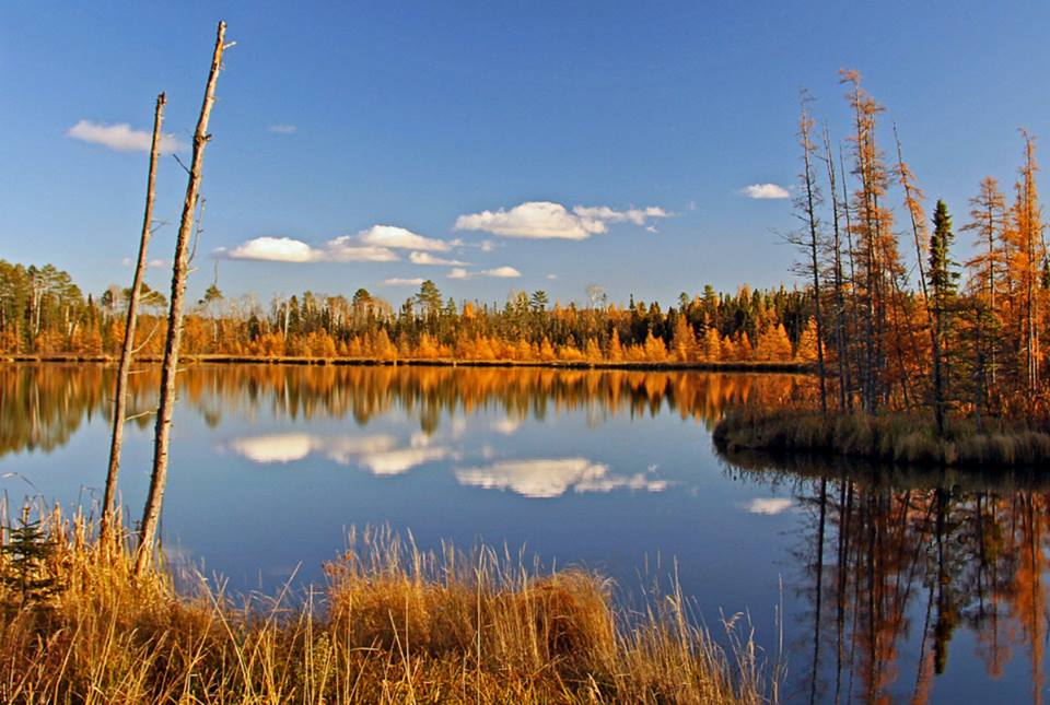 picture perfect fall day in minnesota author plus pluskwik paul