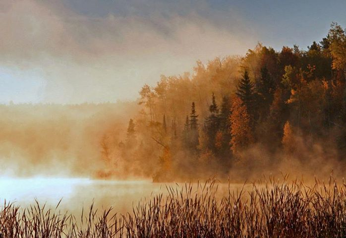 foggy fall morning author pluskwik paul
