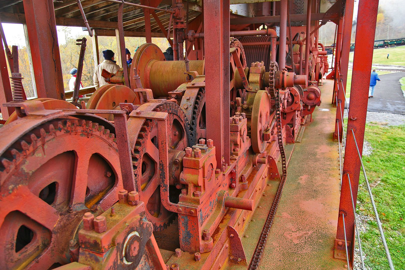 skidder innards img aw author sava gregory and ve verena
