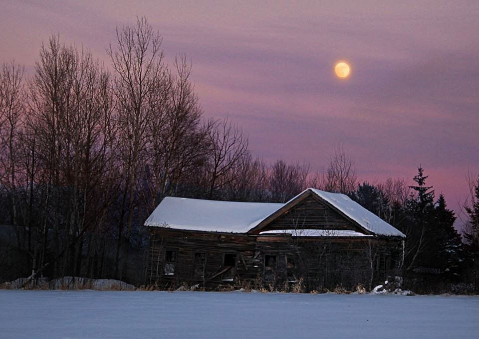 moon rise over the old homestead author pluskwik paul