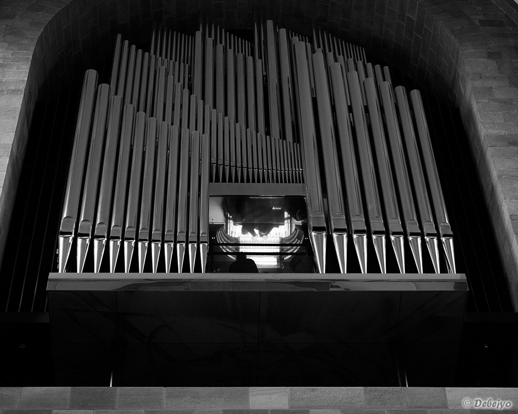 the pianist in cathedral of speyer germany au chakraborty debejyo