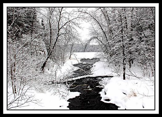 winter landscape along a small stream author plus pluskwik paul
